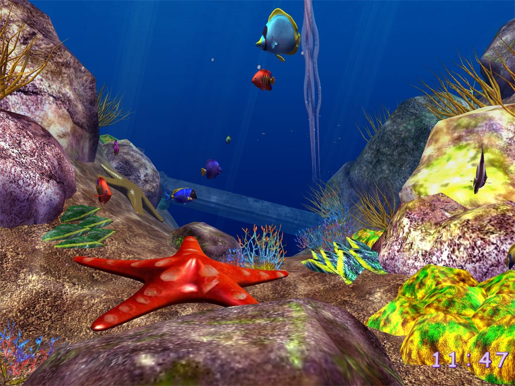 3d ocean fish screensaver 3 5 screenshot a new screensaver plunges ...