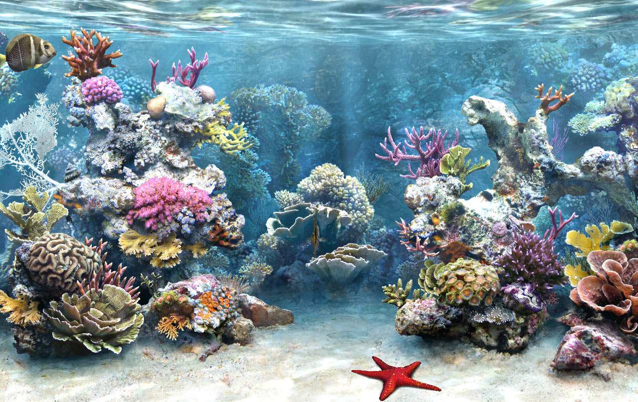3d aquarium screensaver for windows 7