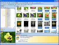 Abander PhotosControl 1.01 B01 screenshot. Click to enlarge!