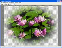 Aurigma Graphics Processor 1.9 screenshot. Click to enlarge!