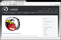 BlackHawk Web Browser 2.0.305 screenshot. Click to enlarge!