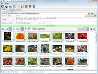 Bulk Image Downloader 5.7.0.0 screenshot. Click to enlarge!