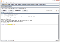 Burp Suite Free Edition 1.7.22 screenshot. Click to enlarge!