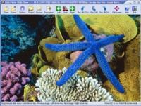 Easy Photo Slide Show 2.7.6.30 screenshot. Click to enlarge!