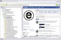Enselor Downloader 2.1 screenshot. Click to enlarge!