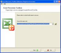 Excel Recovery Toolbox 1.4.24 screenshot. Click to enlarge!