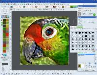 Focus Photoeditor 7.0.5 screenshot. Click to enlarge!