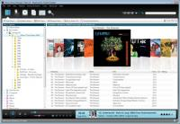 Helium Music Manager 12.0.14277.0 screenshot. Click to enlarge!