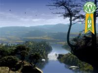 Hidden River - Animated 3D Wallpaper 5.07 screenshot. Click to enlarge!