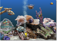 Marine Aquarium 3 3.0 screenshot. Click to enlarge!