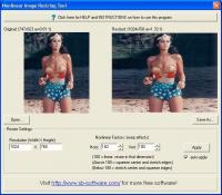 Nonlinear Image Resizing Tool 1.0 screenshot. Click to enlarge!