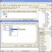 Oracle Data Access Components 10.0.2 screenshot. Click to enlarge!