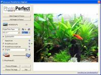 PhotoPerfect DigiCam 1.2.1 screenshot. Click to enlarge!