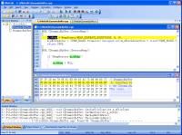PilotEdit 10.6.0 screenshot. Click to enlarge!