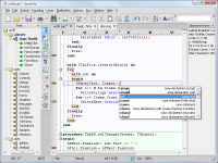 Portable SynWrite 6.39.2750 screenshot. Click to enlarge!