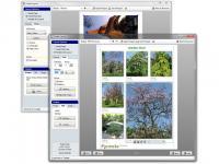 PrintStation 4.25 screenshot. Click to enlarge!