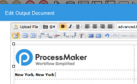 ProcessMaker 3.1.2b screenshot. Click to enlarge!