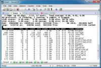 SecureCRT 8.1.2.1362 screenshot. Click to enlarge!