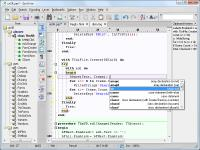 SynWrite 6.39.2750 screenshot. Click to enlarge!